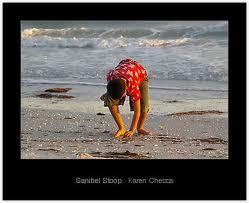 Sanibel Stoop