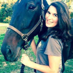 Abby horse